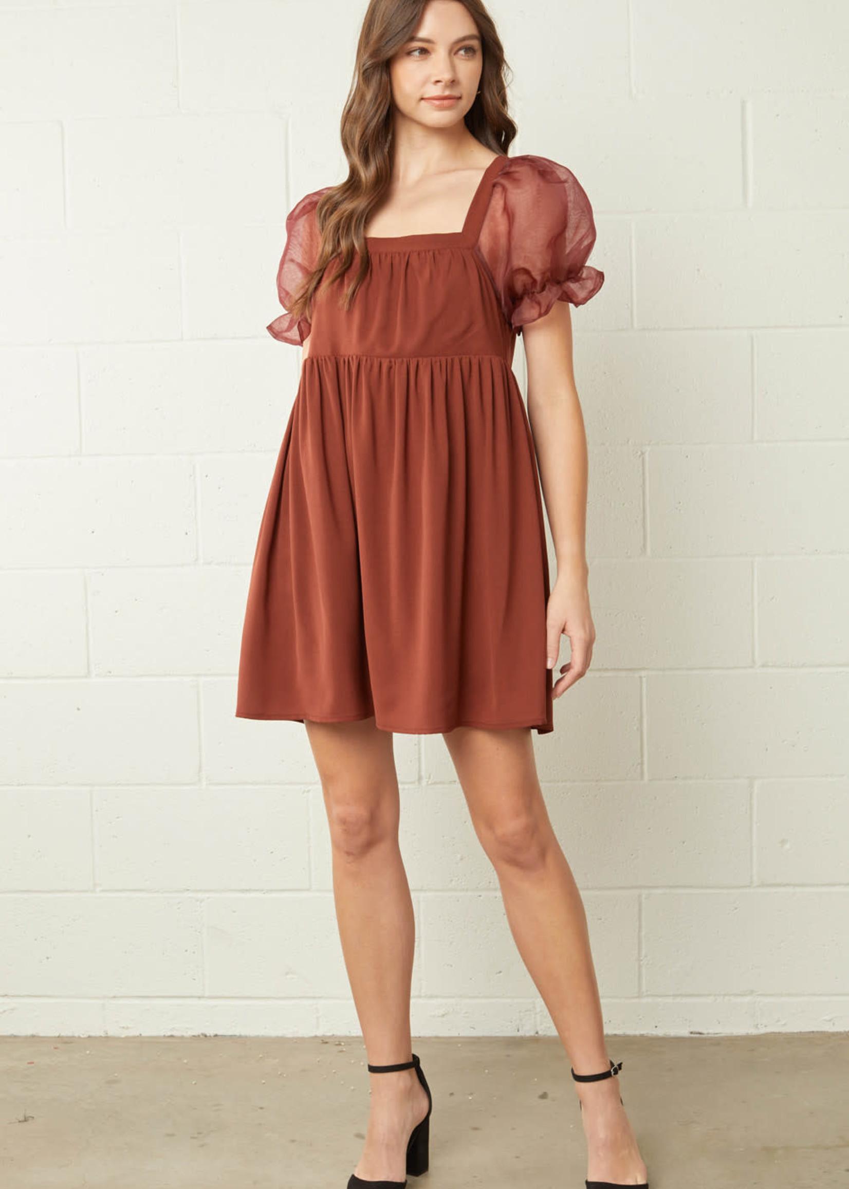 Sheer Delight Rust Dress