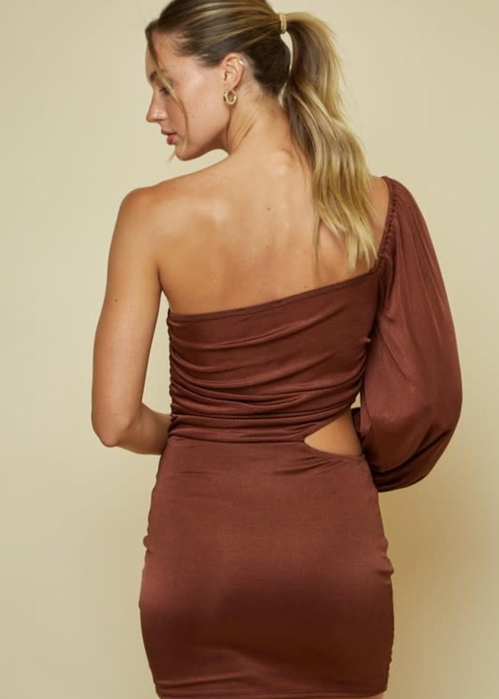 Dream On Brown Dress