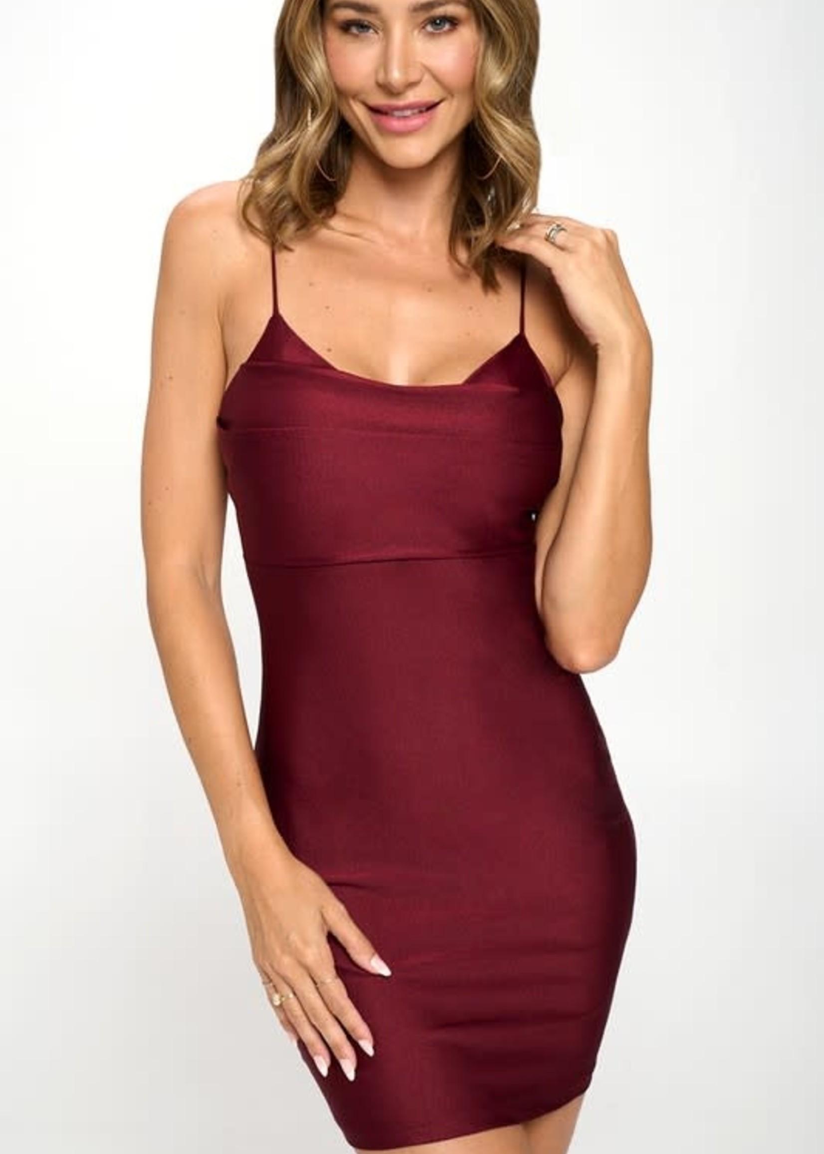 Time To Celebrate Burgundy Dress