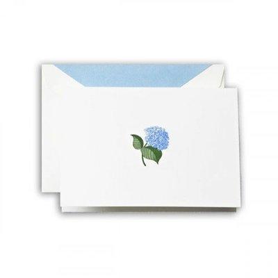 Crane Blue Hydrangea Notes