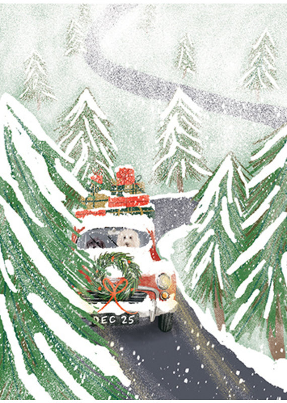 Little Branch Dogs Driving in the Snow