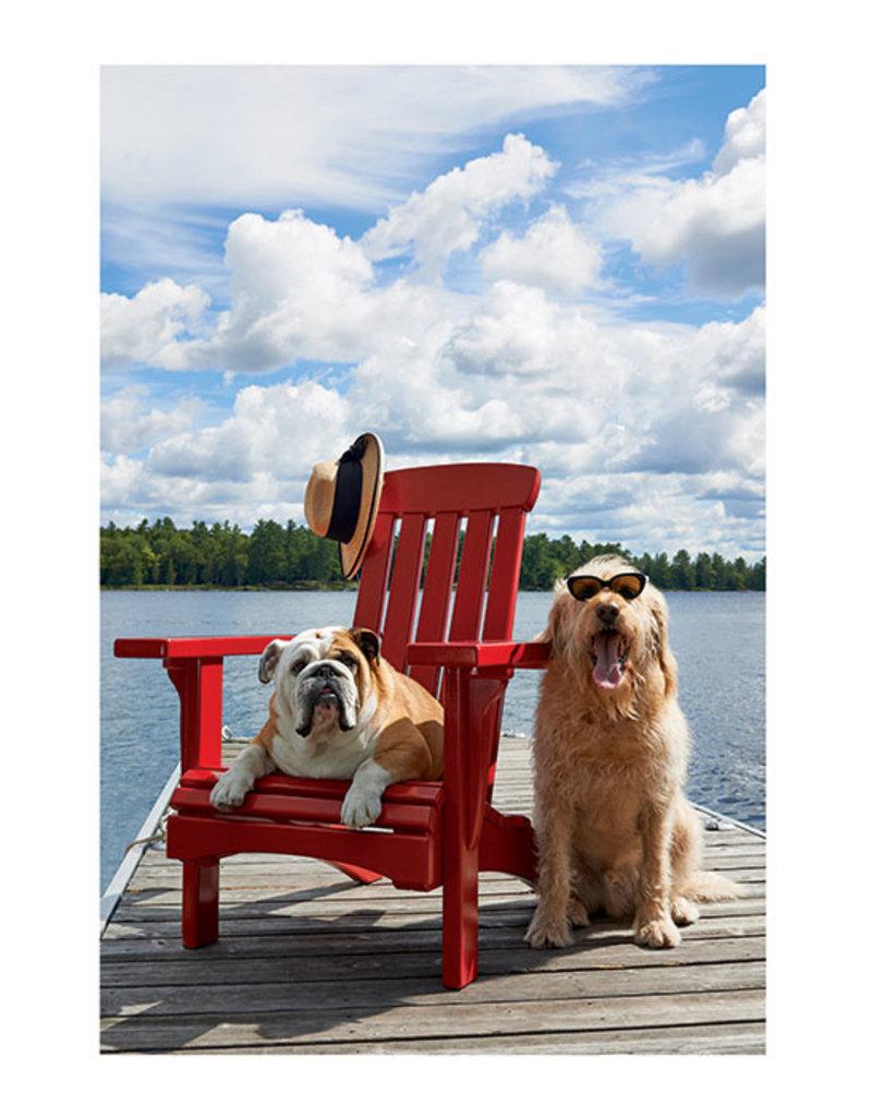 Palm Press Dogs on Dock