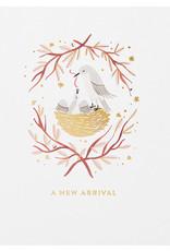Meghann Rad New Arrival Nest