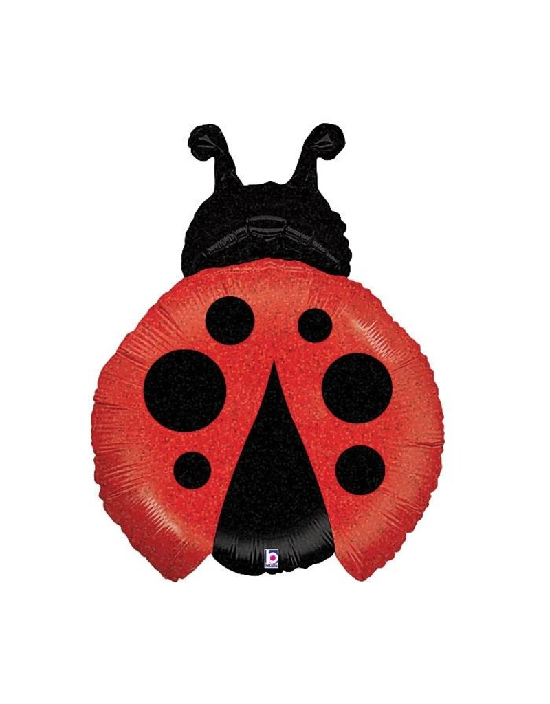 Ladybug Balloon