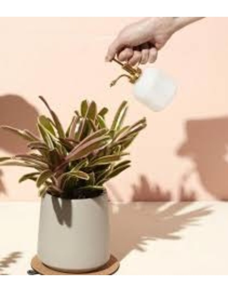 Modern Sprout Plant Mister - White Glass & Brass
