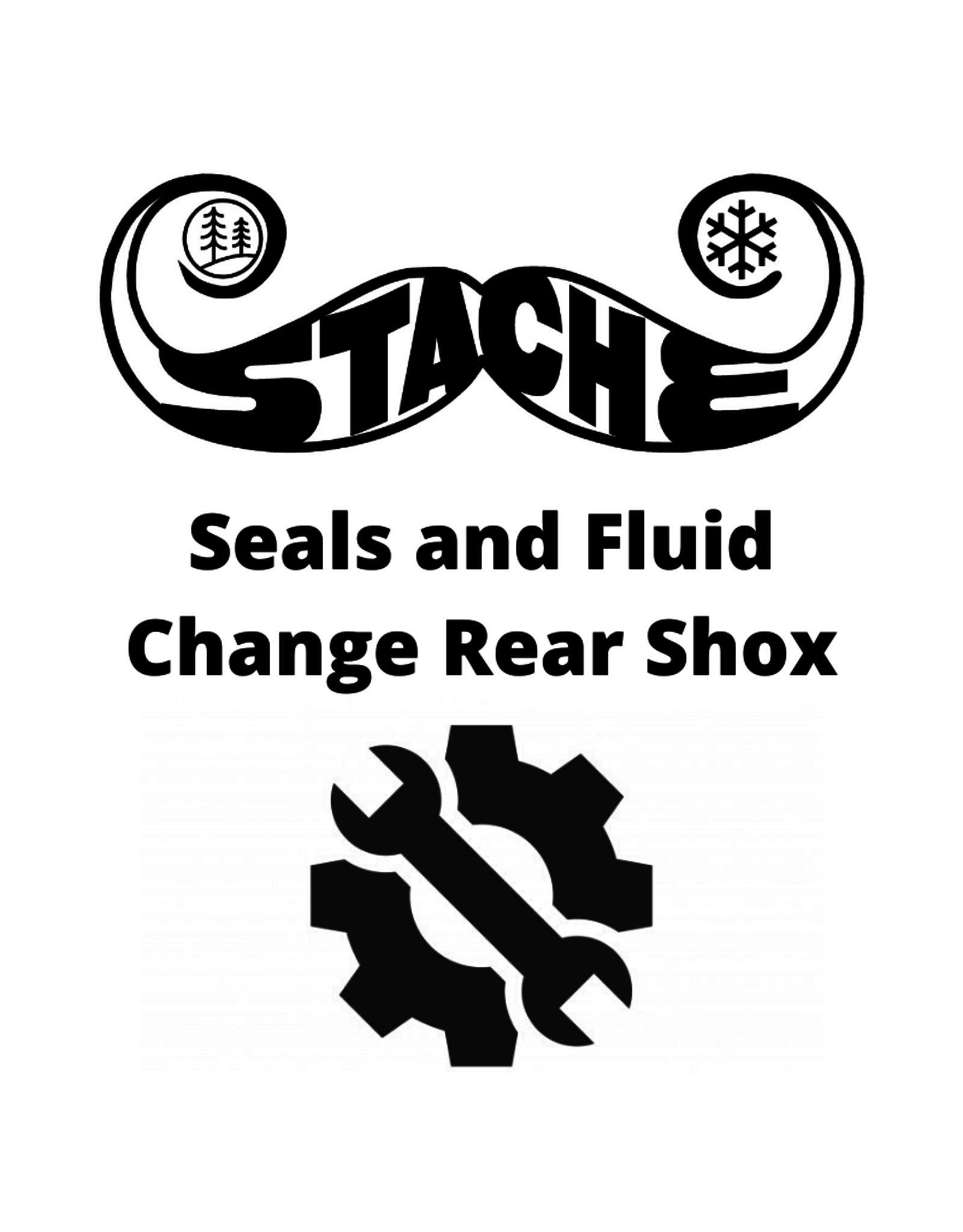 Seals and Fluid Change Rear Shox
