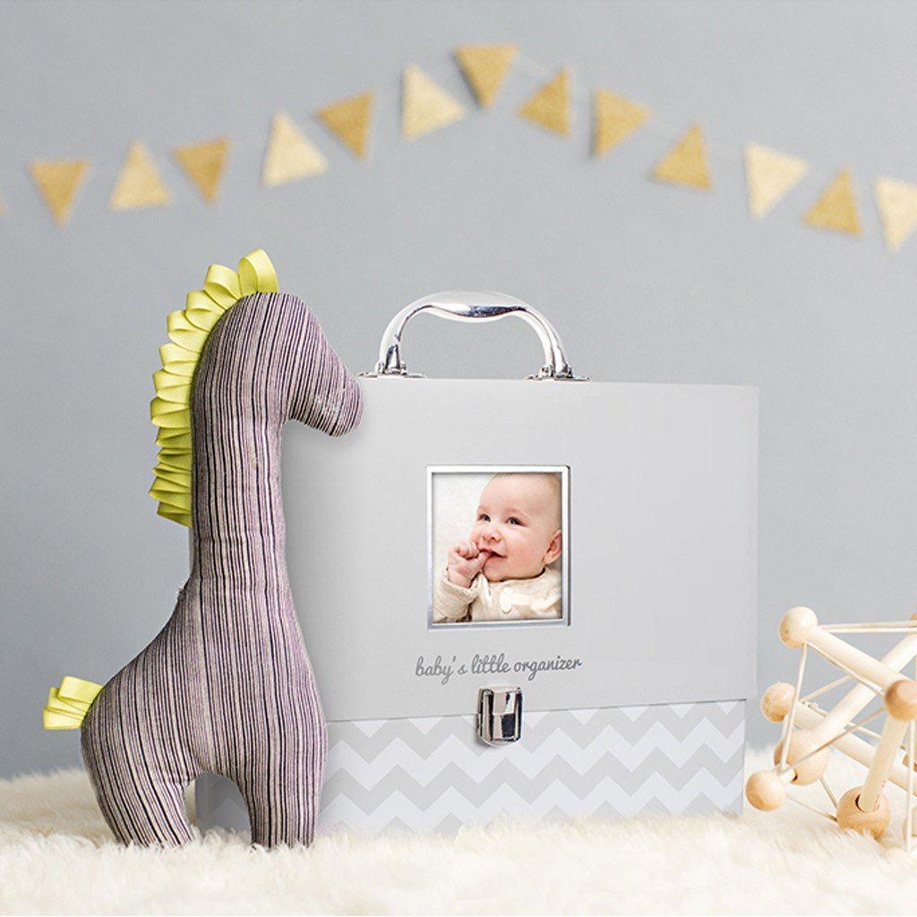 Pearhead Pearhead Baby's Little Organizer