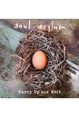 New Vinyl Soul Asylum - Hurry Up And Wait 2LP
