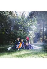 New Vinyl Big Thief - U.F.O.F. LP