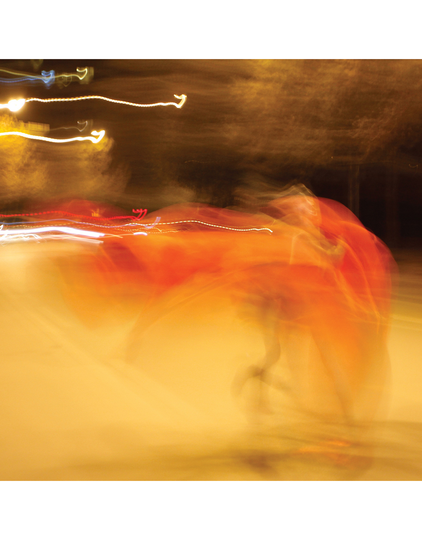 New Vinyl William Basinski - A Shadow In Time LP