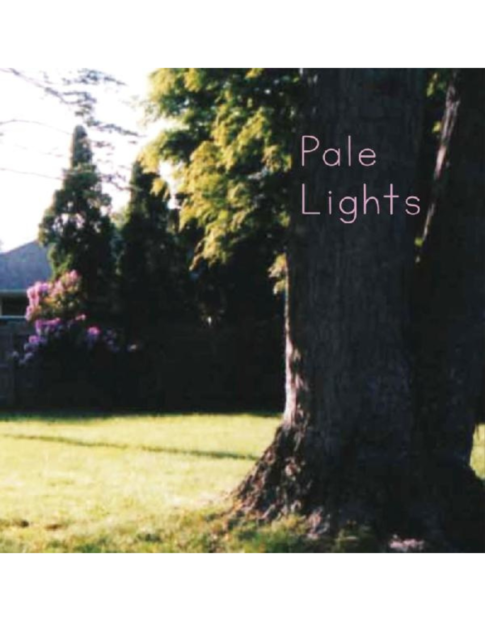 New Vinyl Pale Lights - You And I 7""