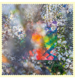 New Vinyl Four Tet - Sixteen Oceans 2LP