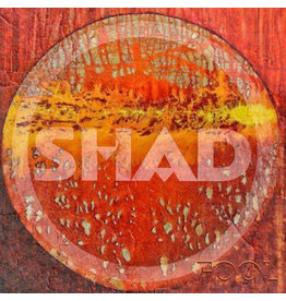 New Vinyl Shad - Fool / Belittle 7""