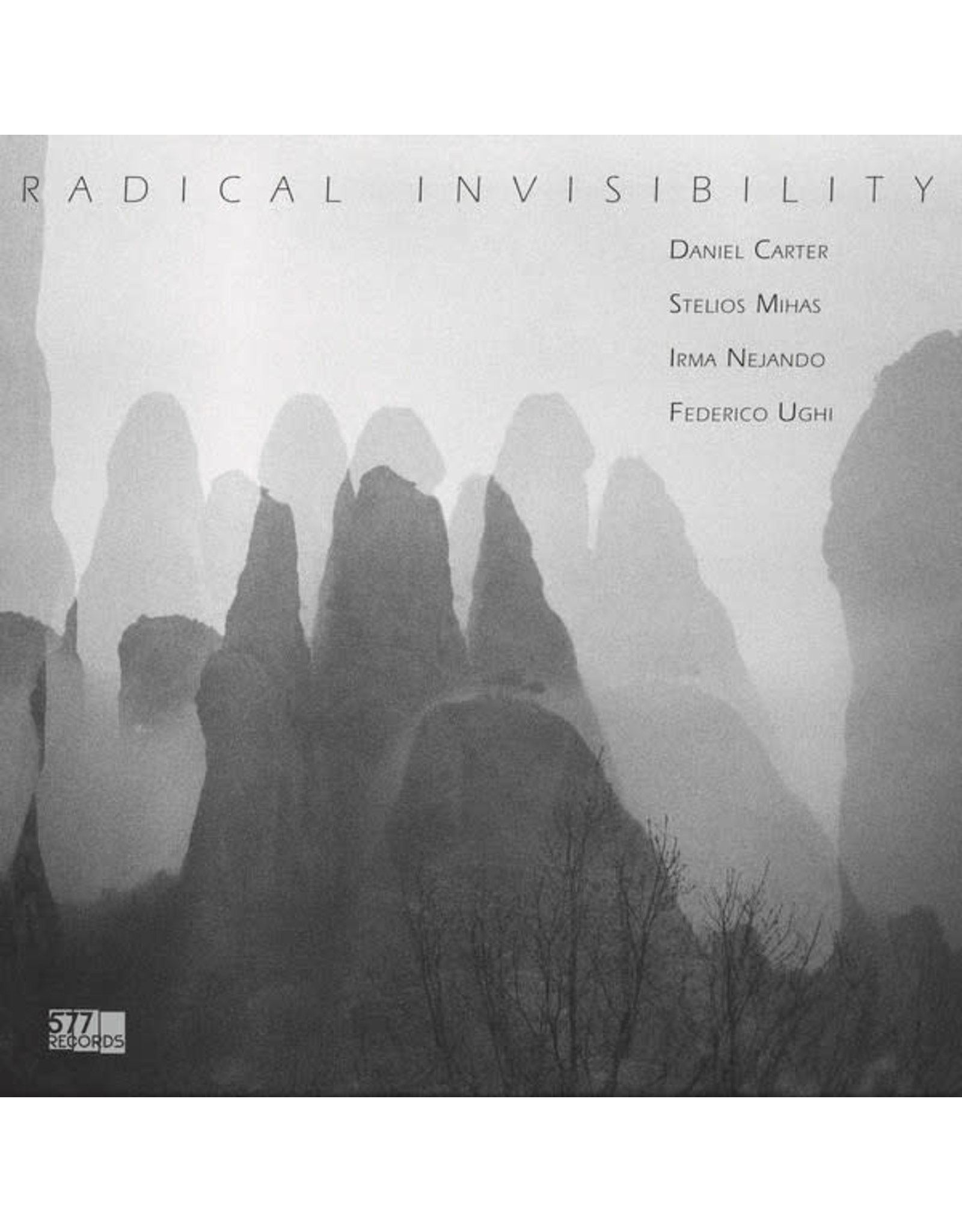 New Vinyl Radical Invisibility - S/T LP