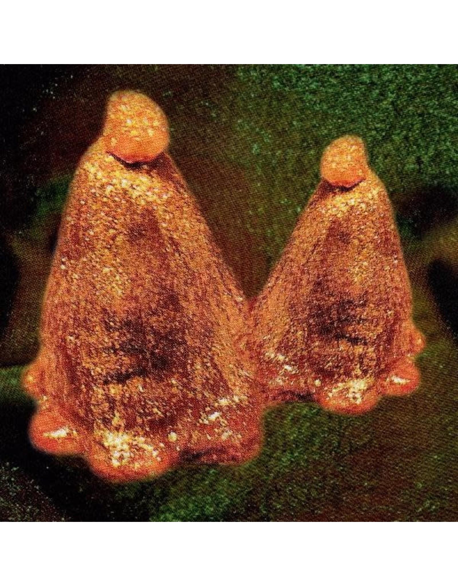 New Vinyl Black To Comm - Oocyte Oil & Stolen Androgens (IEX, Colored) LP
