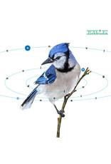 New Vinyl Mekbuda - Convincing Delusional LP