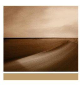 New Vinyl Brian Eno - Small Craft On A Milk Sea LP