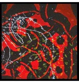 New Vinyl Brian Eno - Nerve Net 2LP
