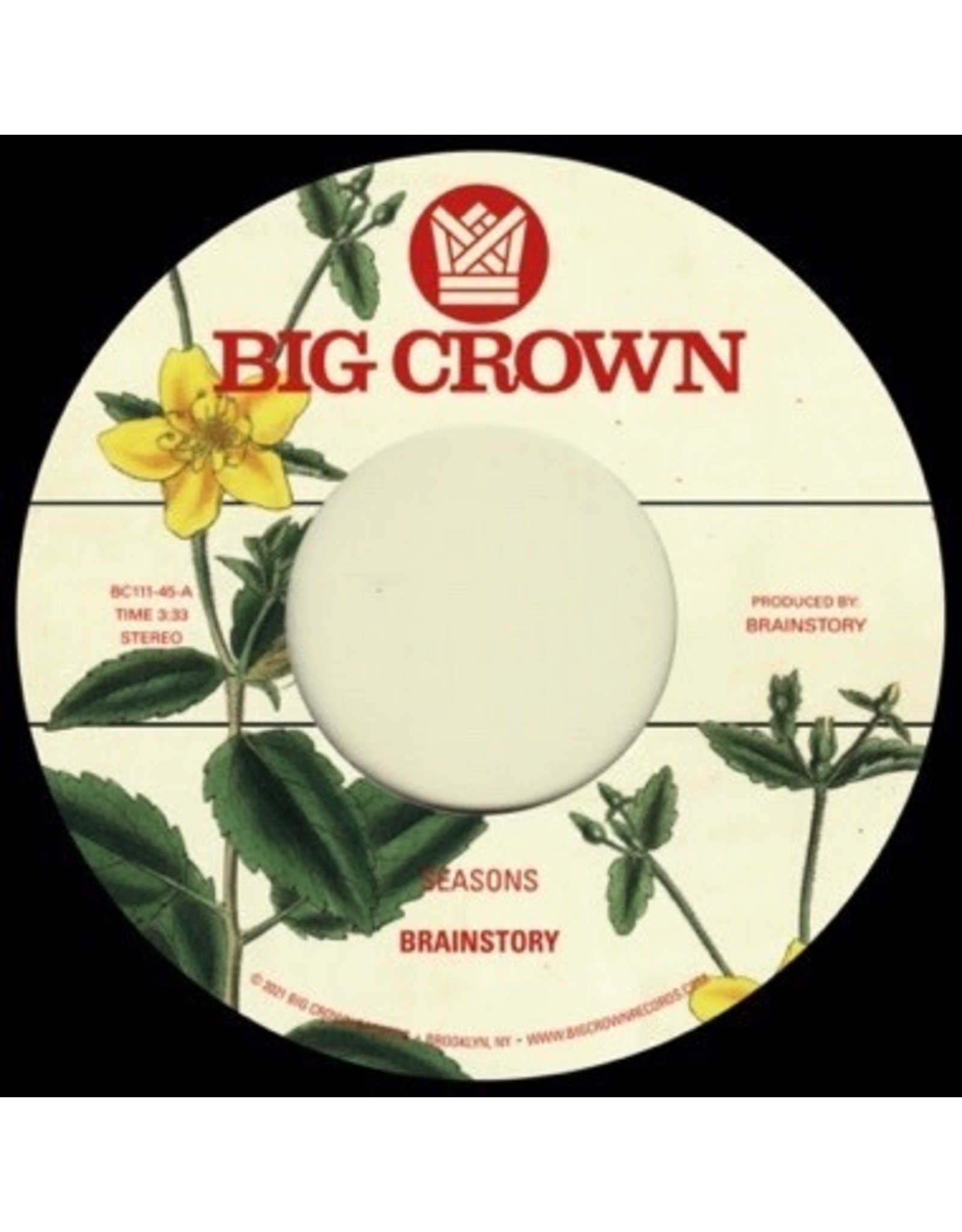 "New Vinyl Brainstory - Seasons b/w Bye Bye 7"""