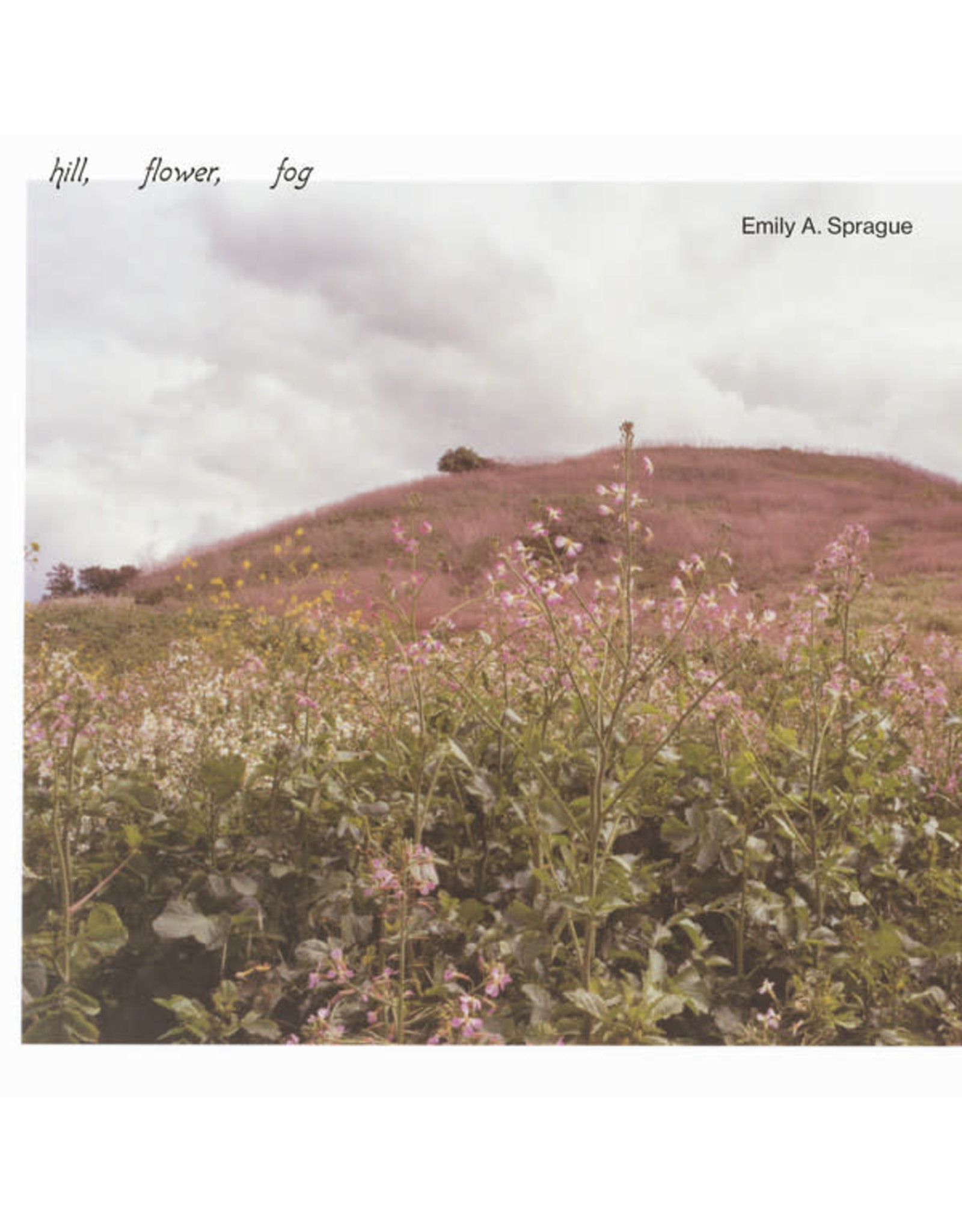 New Vinyl Emily A. Sprague - Hill, Fower, Fog LP