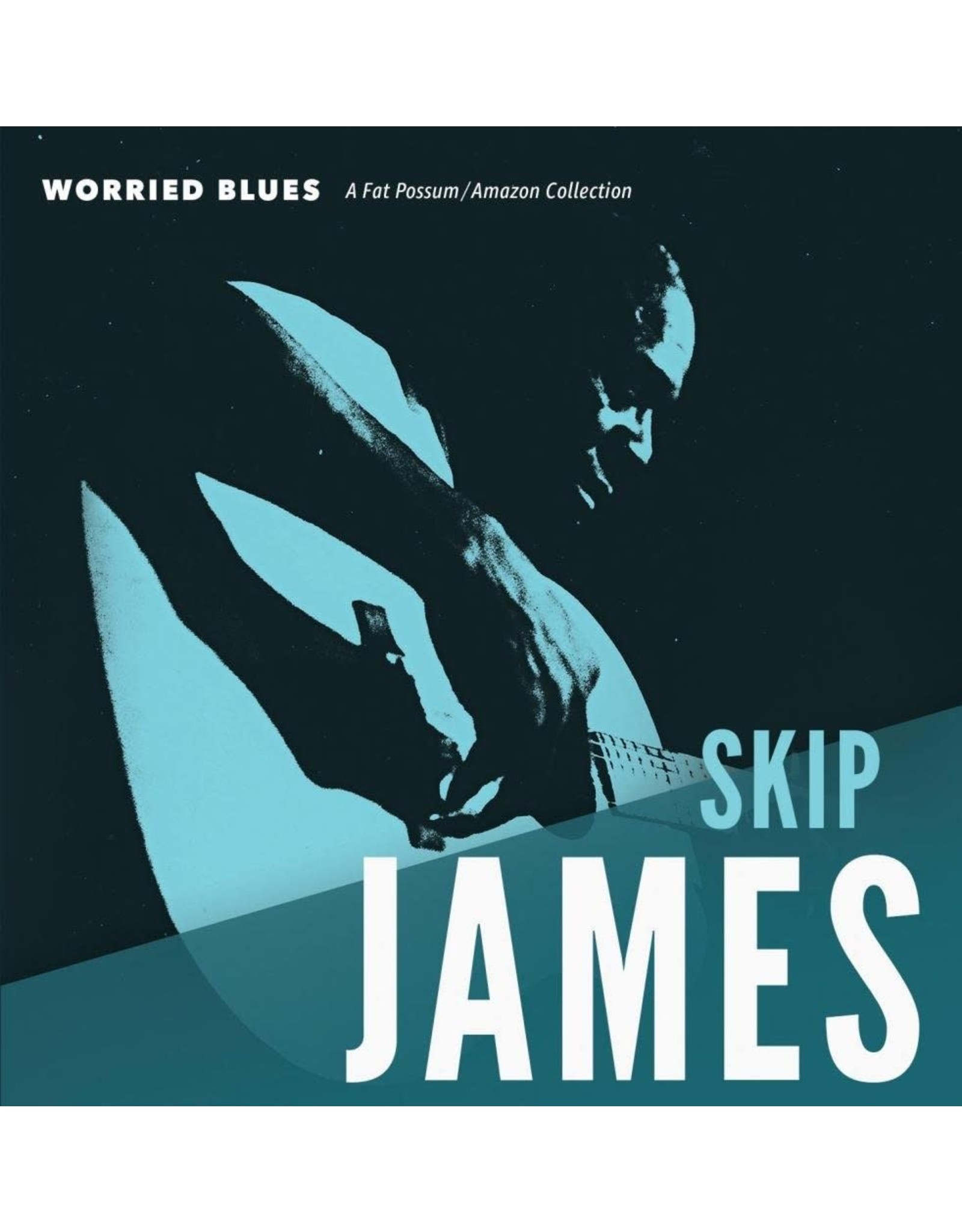 New Vinyl Skip James - Worried Blues LP