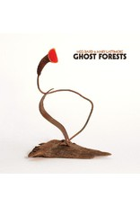 New Vinyl Meg Baird & Mary Lattimore - Ghost Forests (IEX, Clear) LP