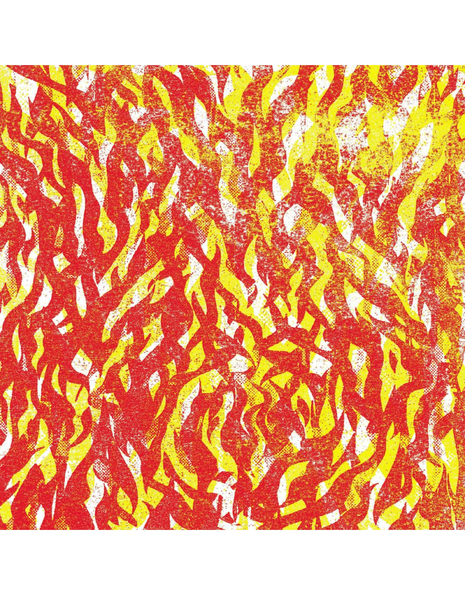 New Vinyl The Bug - FIRE  (Light Gray) 2LP