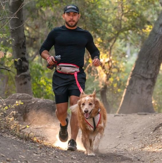 K9 Series Runners WaistPack + Leash