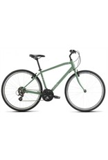 Raleigh Raleigh Detour 1 Green Large