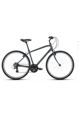 Raleigh Raleigh Detour 1 Gray Xlarge