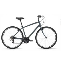 Raleigh Raleigh Detour 1  Gray Medium
