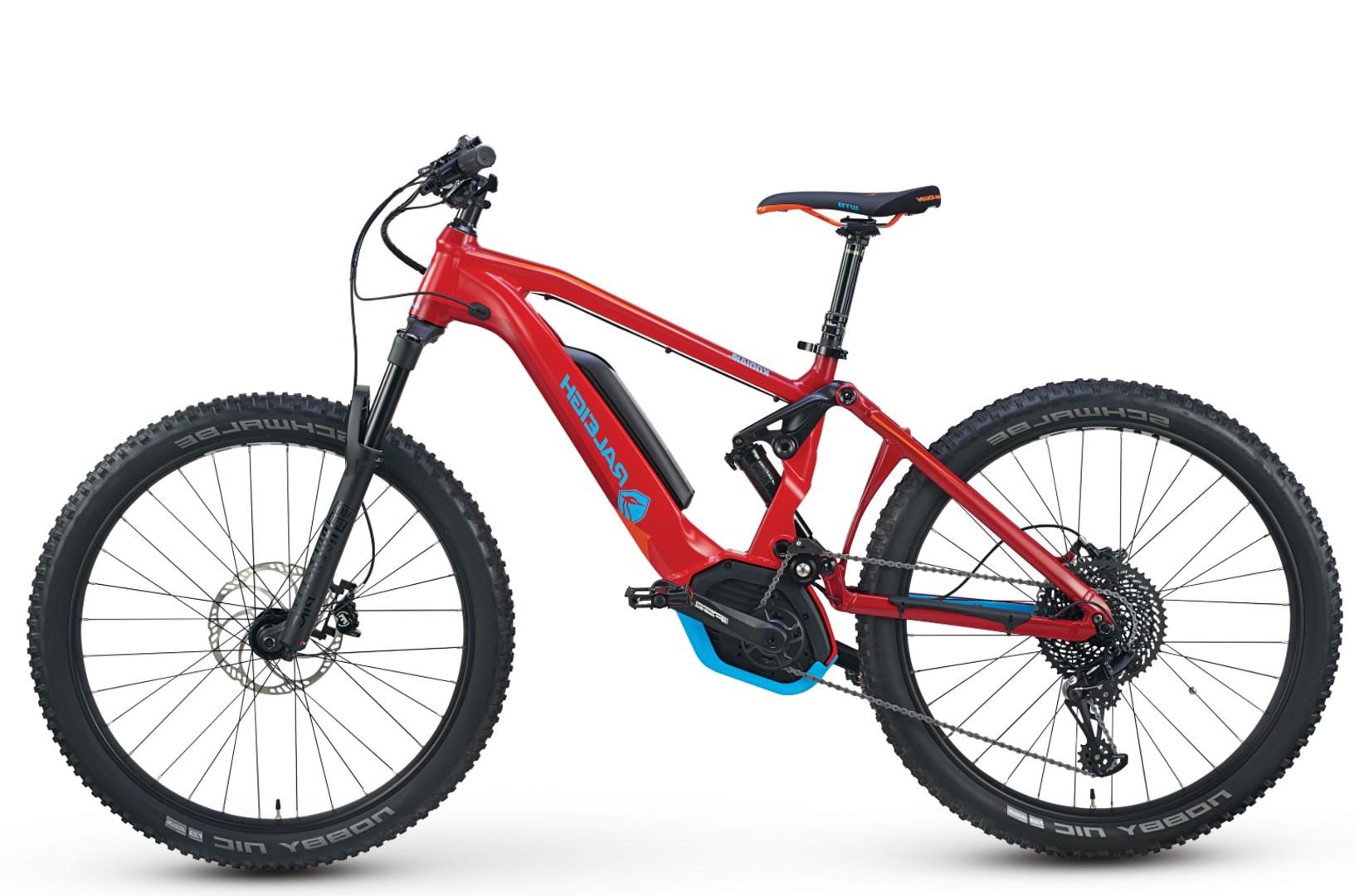 Sarasota Electric Bike