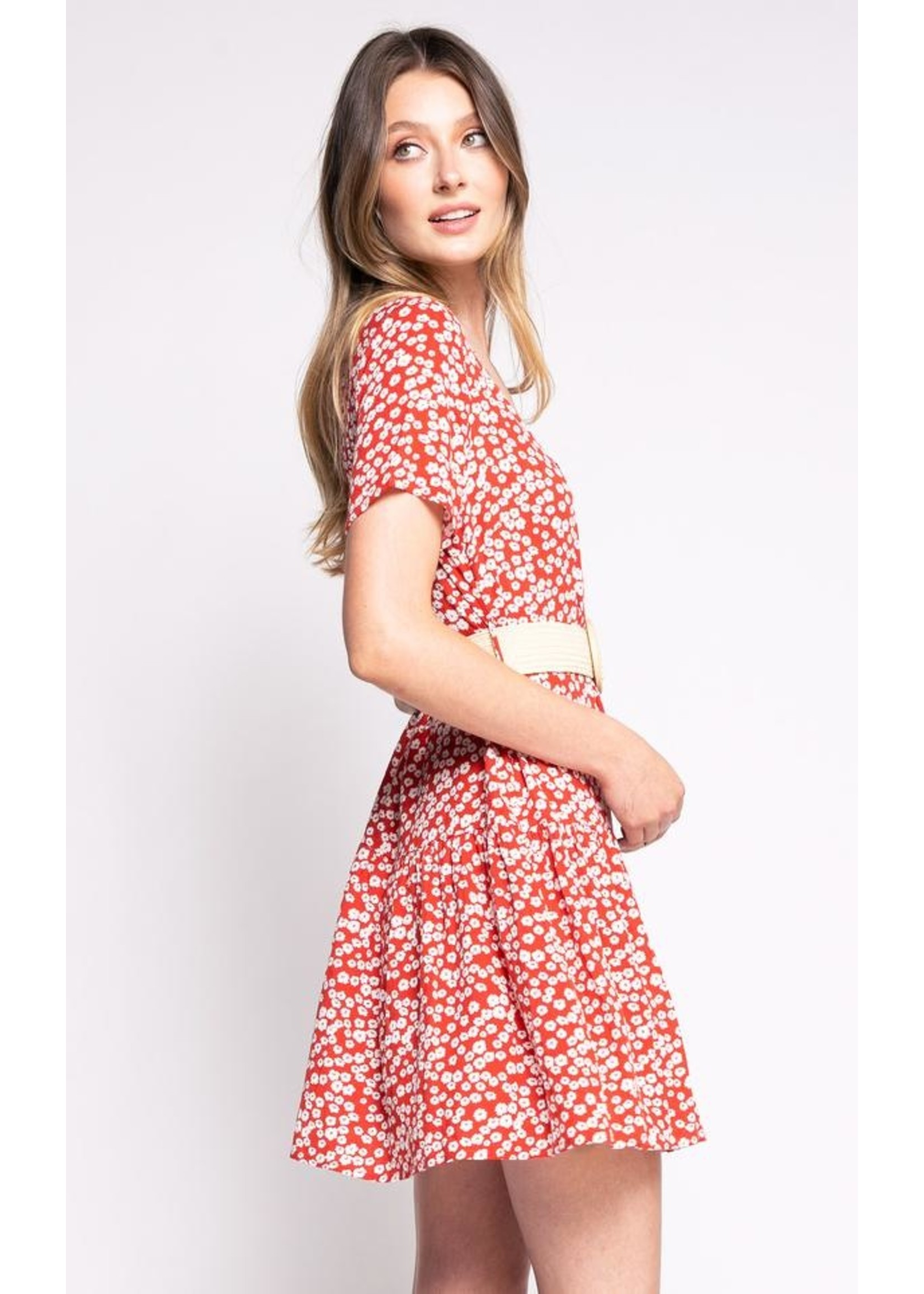 Pink Martini The Lylou Dress