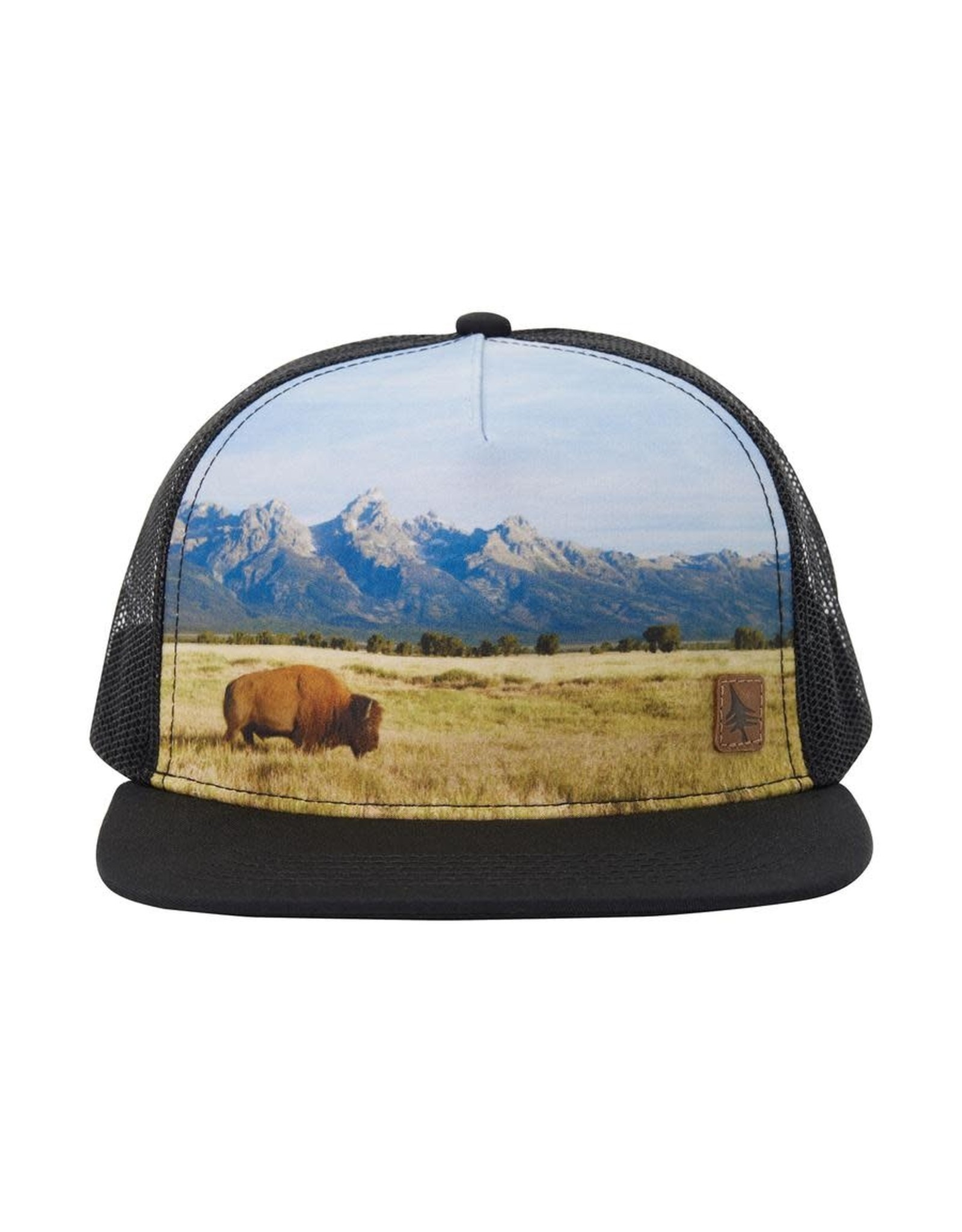 Hippy Tree HT Rangeland Cap: Black- O/S