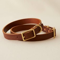 Billy Wolf Terra Rambler Collar
