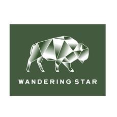 Wandering Star Geo Bison Sticker