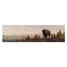 WS Bison Panorama Bumper Sticker