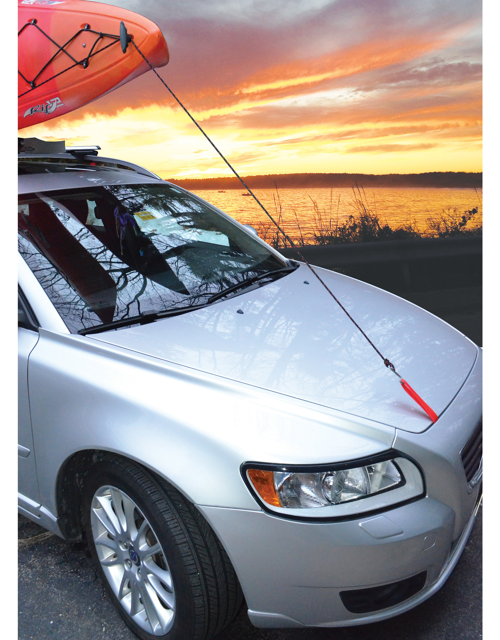 Malone Auto Rack Malone QuickLash™ T-Style Hood Loops