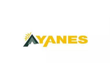 Yanes