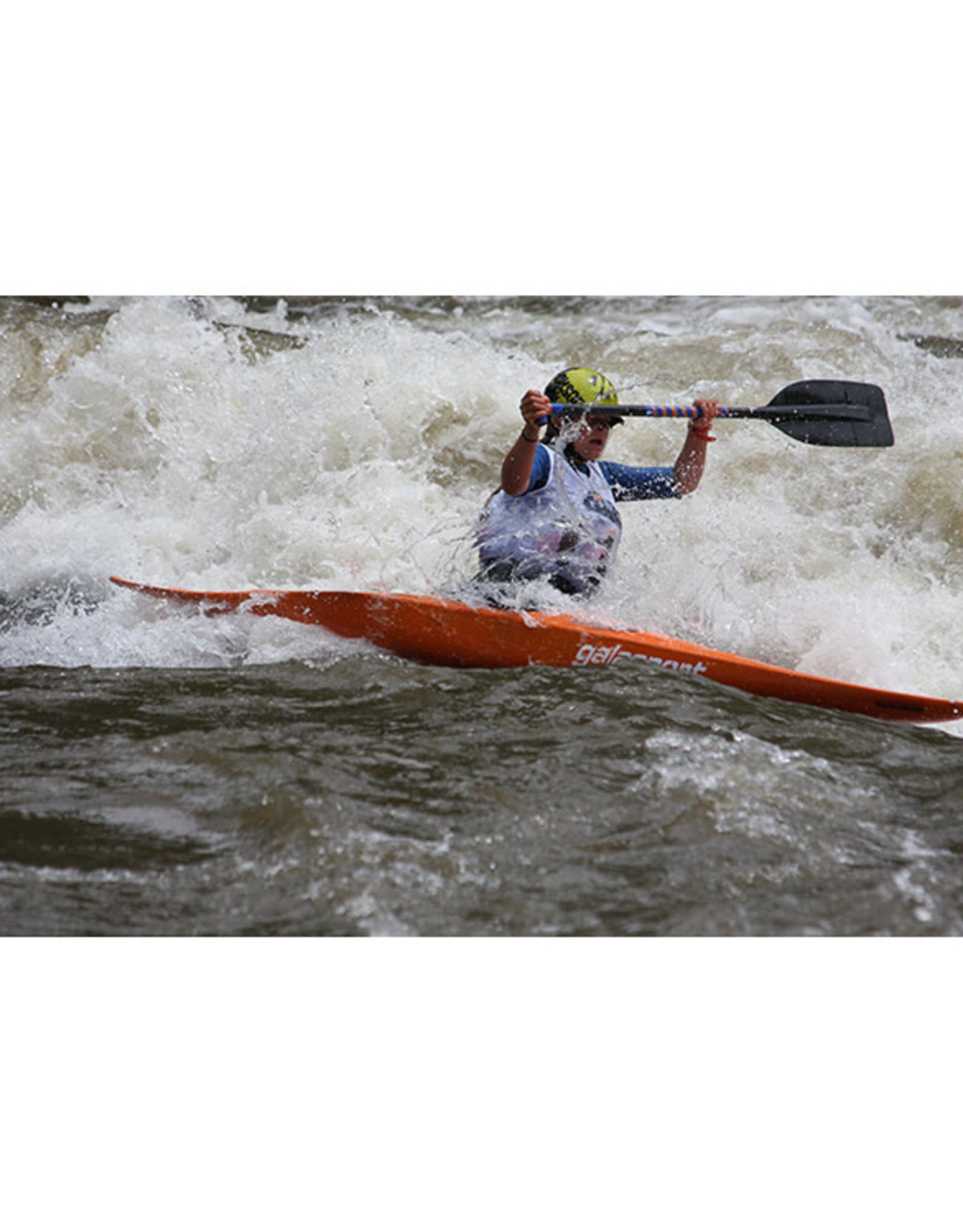 Werner Werner Bandit 2pc paddle LeverLock®