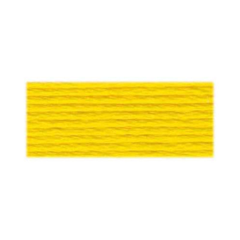 DMC DMC Embroidery Floss 973
