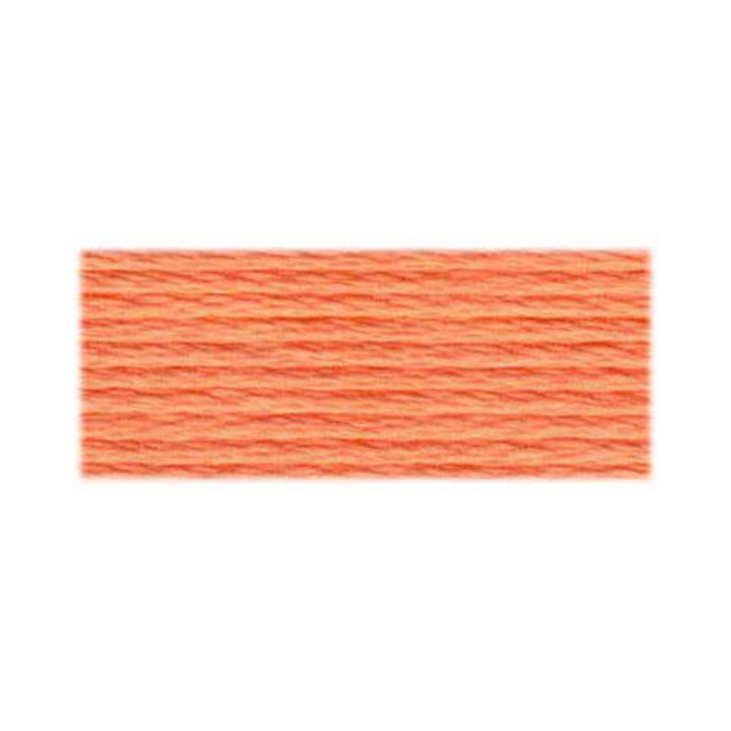 DMC DMC Embroidery Floss 3825
