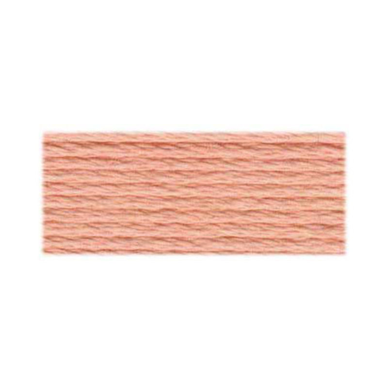 DMC DMC Embroidery Floss 3779