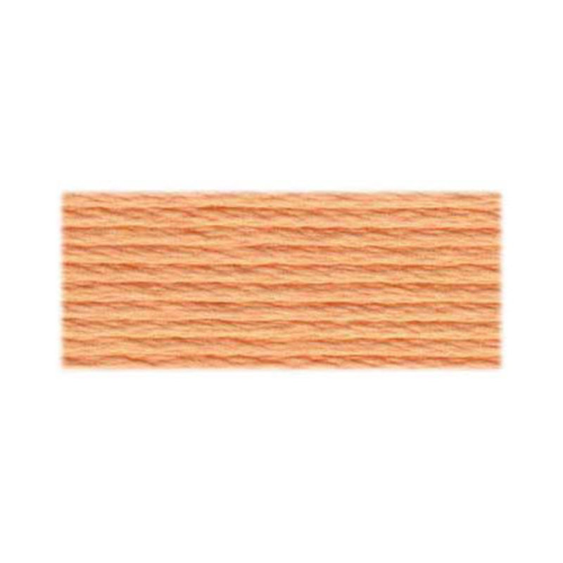 DMC DMC Embroidery Floss 3856