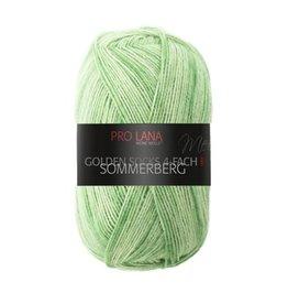 Pro Lana Pro Lana Golden Sock 4-Ply - Sommerberg