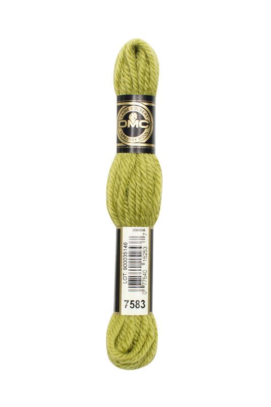 DMC DMC Tapestry Wool 7583
