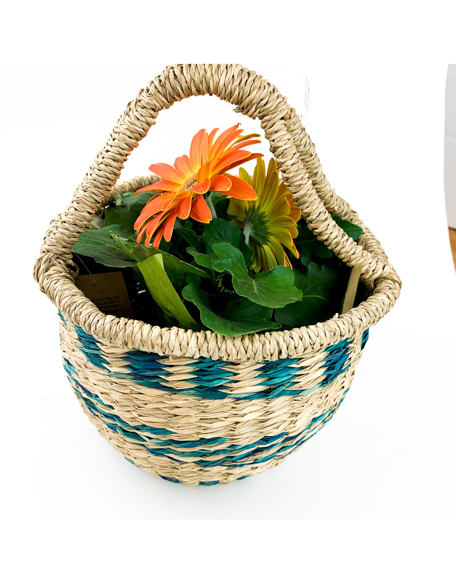 "Creative Co-Op 8"" Hand Woven basket W handle"