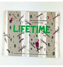 Hachette Lifetime