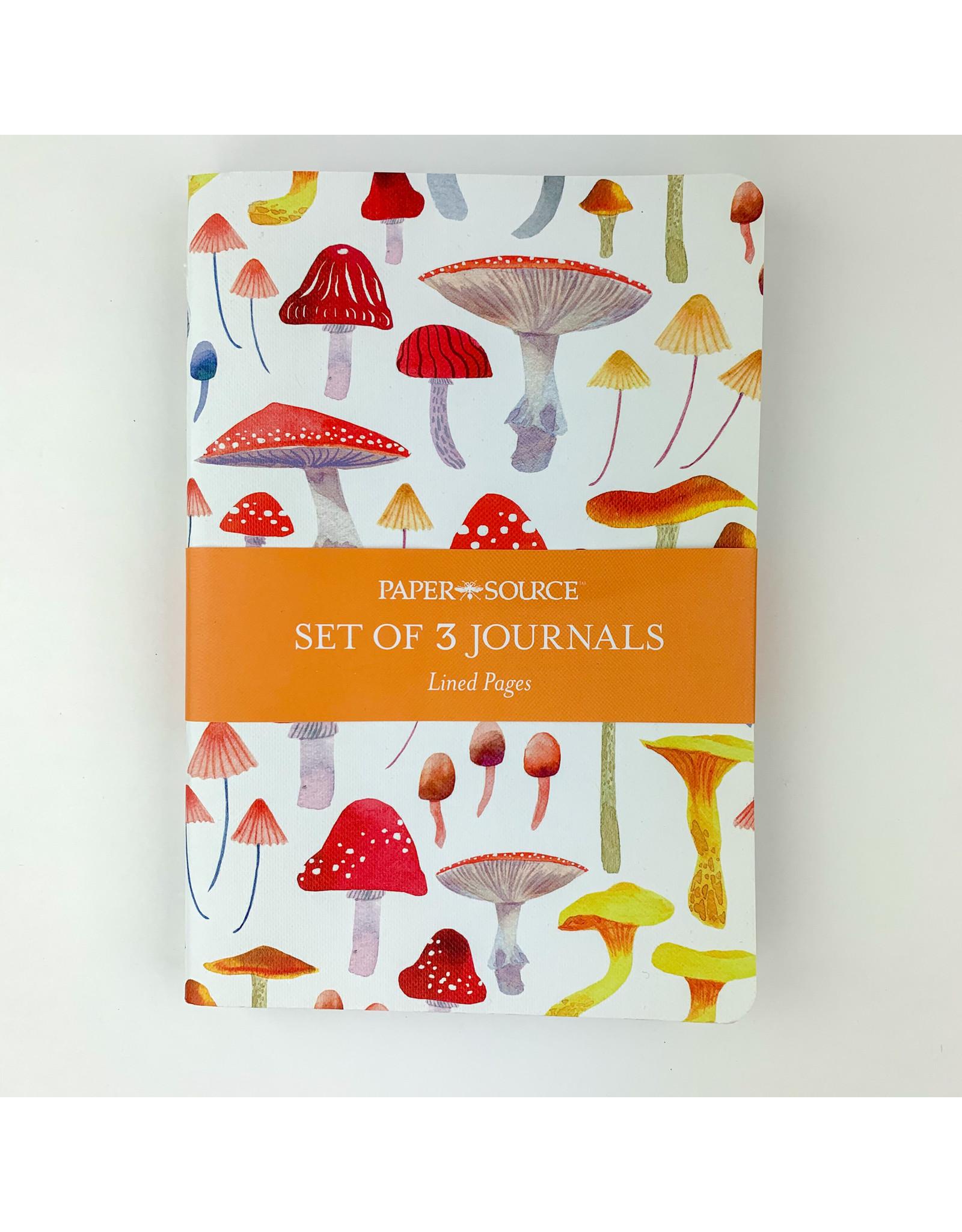 waste not paper Autumn botanical journals
