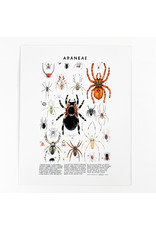 Kelzuki/Consignment Mini Print Consignment - Araneae